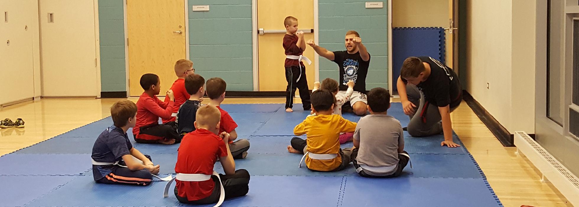 Mixed Martial Arts in Lockport IL, Kids Karate in Lockport IL, Taekwondo in Lockport IL, Jiu-Jitsu in Lockport IL